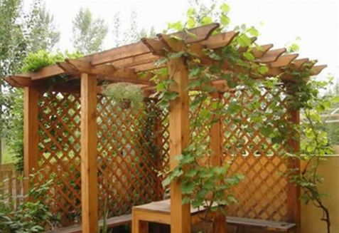 其它防腐木做的花架